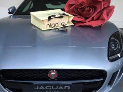 jaguar_varese_ftype_01
